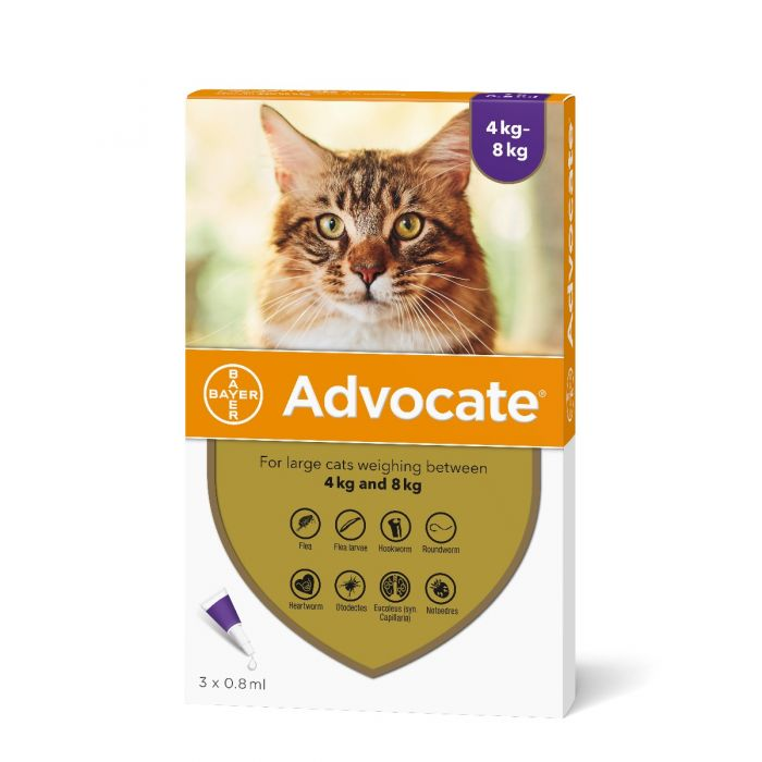 Advocate For Large Cats 4 8kg From 12 49