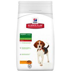 Hills Science Plan Puppy Medium Healthy Development with Chicken Dry