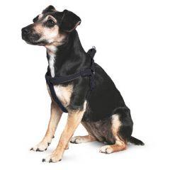 Ancol Padded Reflective Dog Harness