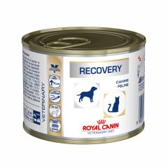Royal Canin Veterinary Diet Canine/Feline Recovery Wet 12x195g Can