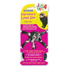 Ancol Ferret Harness and Lead Set