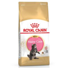 Royal Canin Maine Coon Kitten Dry
