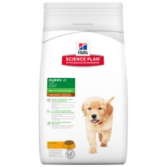 Hills Science Plan Puppy Large Breed Healthy Development with Chicken Dry