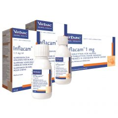 Inflacam 1.5mg/ml Oral Suspension for Dogs