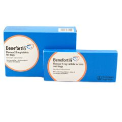 Benefortin Flavour Tablets