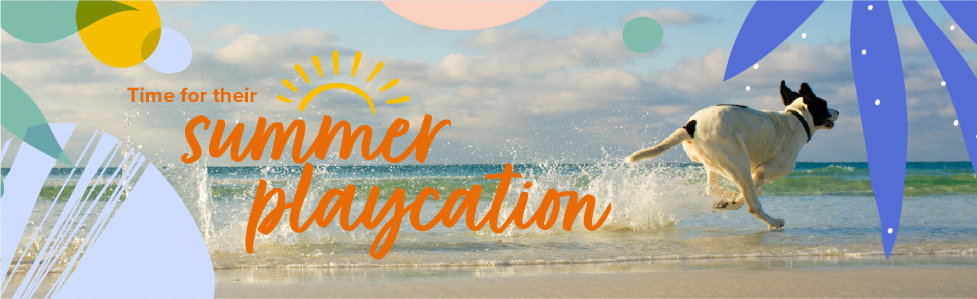 Time for summer playcation
