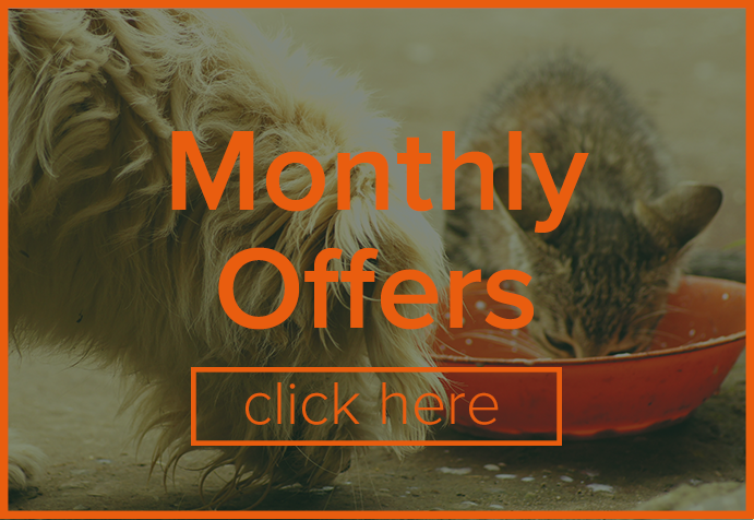 We have new offers every month, you don't want to miss out
