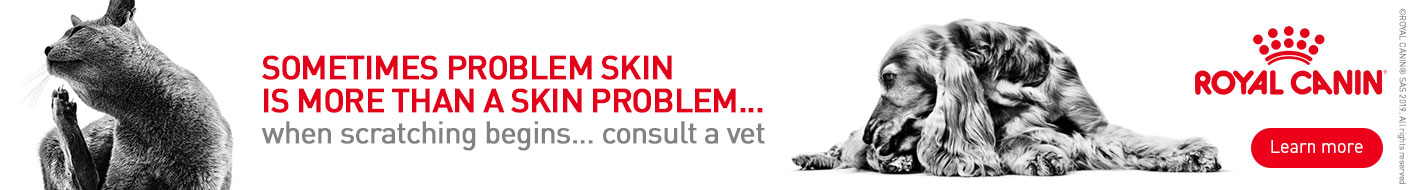 Skin health tips from Royal Canin