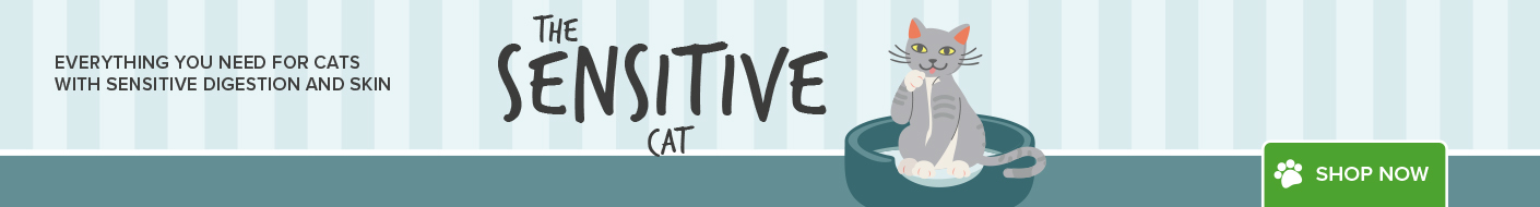 All about your sensitive cat