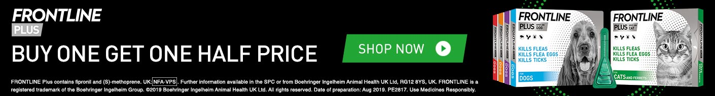 Buy 1 get 1 half price during August!