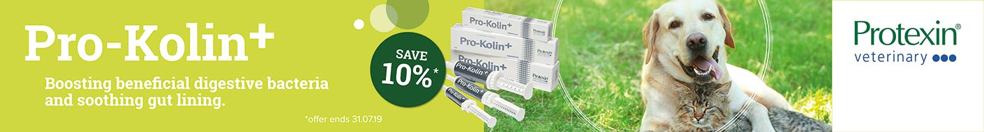 Digestive support with Pro Kolin+ with 10% off