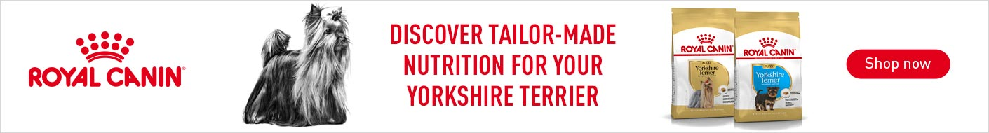 Shop Royal Canin Yorkshire Terrier now!