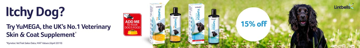 Save on YuMEGA this month - Helping your dog's skin