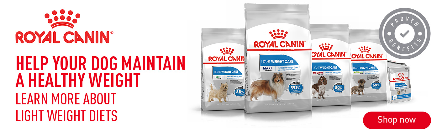 Shop Royal Canin Light Weight Care now!