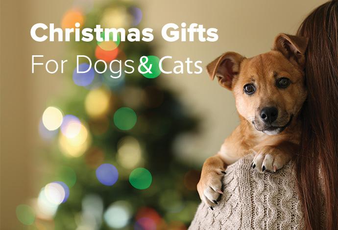Shop Christmas now