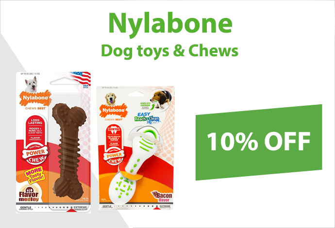 Shop Nylabone now!