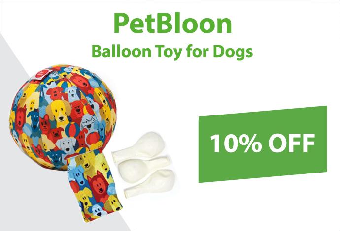 Shop PetBloon now!