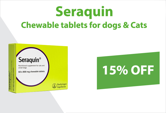 Shop Seraquin now!