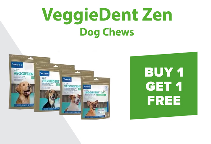 Shop VeggieDent Zen now!