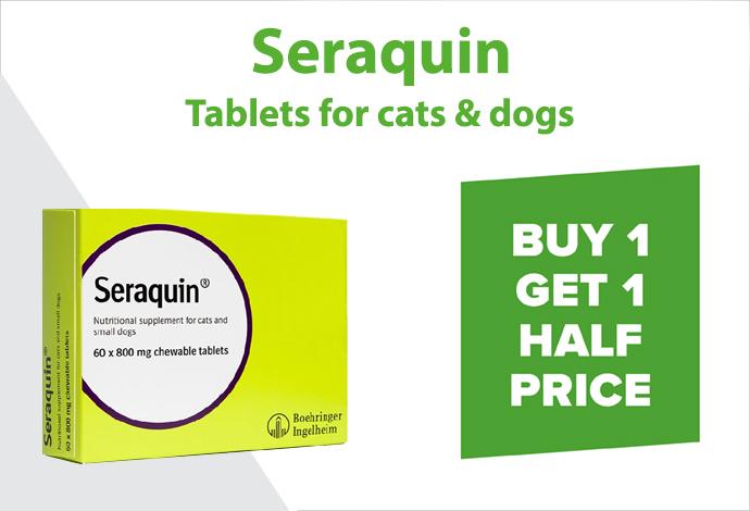Shop Seraquin now!